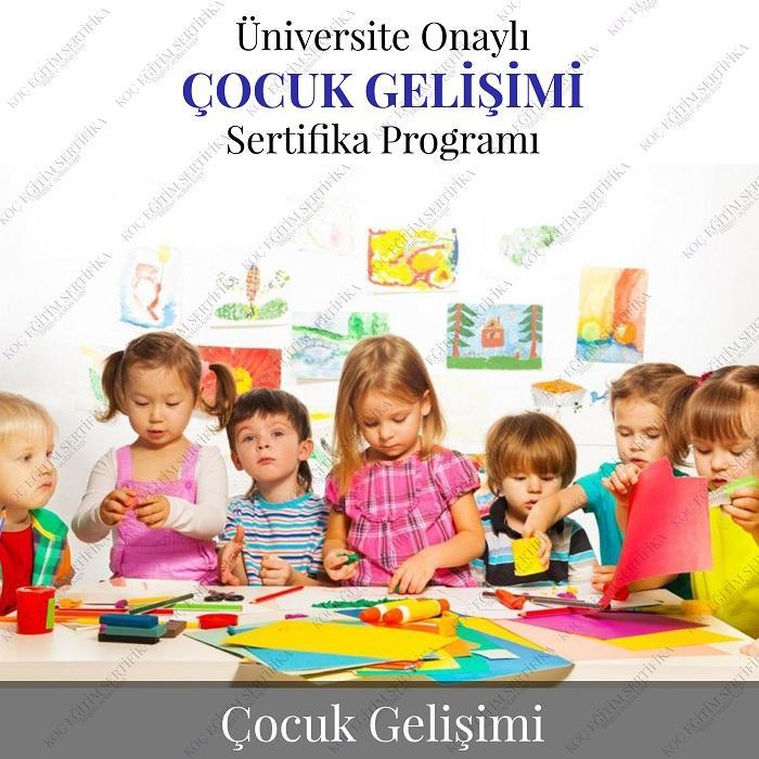 çocuk gelişimi eğitimi sertifikası