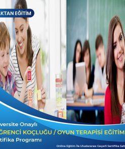 öğrenci koçluğu ve eğit danışmanlığı sertifikası, oyun terapisi sertifikası