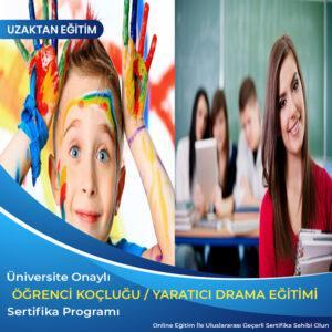 öğrenci koçluğu ve eğitim danışmanlığı, yaratıcı drama eğitmenliği eğitimi