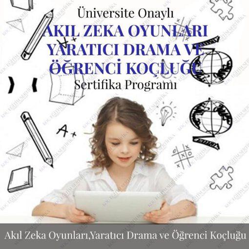 Akıl Zeka Yaratıcı Drama Öğrenci Koçluğu