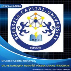 Dil ve Konuşma Yüksek Lisans diploması