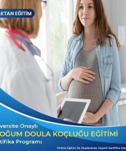 doğum koçluğu sertifikası, doula sertifikası