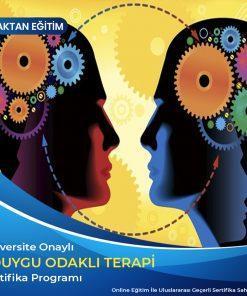 Duygu Odaklı Terapi Sertifikası
