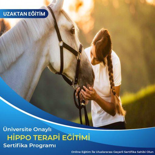 Hippo Terapi Eğitimi