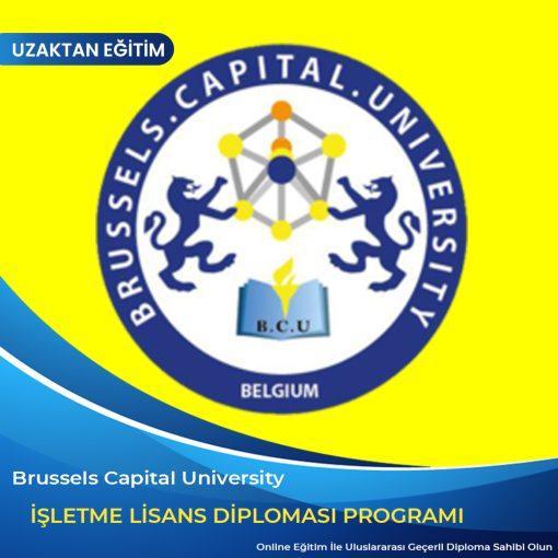İşletme Lisans Diploma Programı