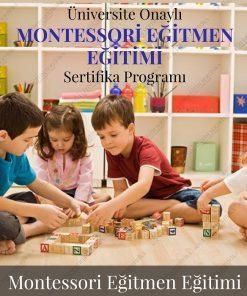 montessori eğitimi sertifika programı