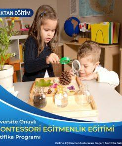 Montessori Eğitmenlik Sertifikası