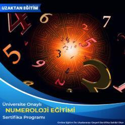 Numeroloji Eğitimi