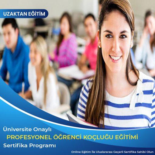 Profesyonel Öğrenci Koçluğu ve Eğitim Danışmanlığı Sertifikası