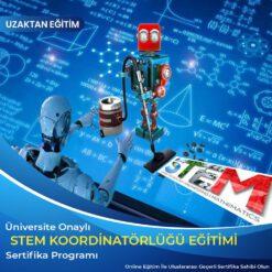 STEM Koordinatörlüğü sertifikası, stem formatörlük sertifikası