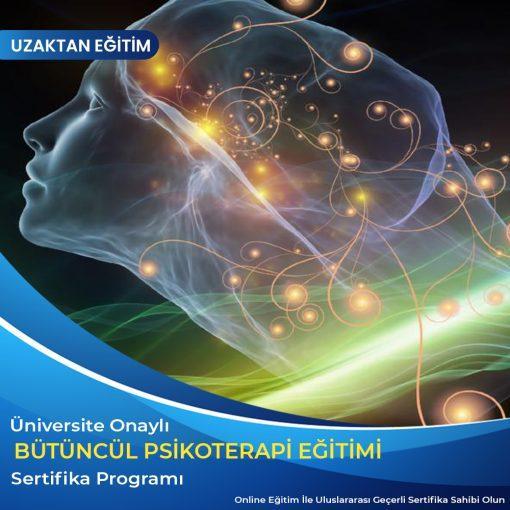 Bütüncül psikoterapi eğitimi