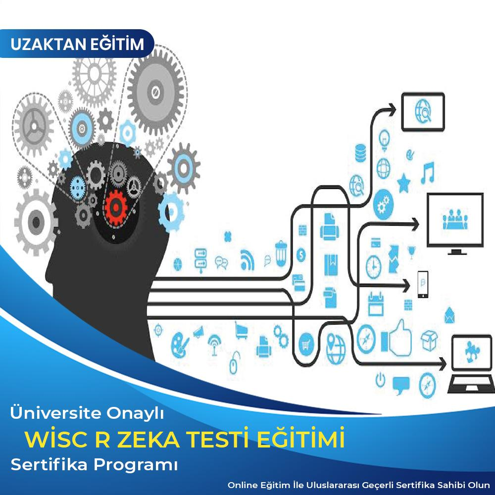 WISC-R Zeka Testi Uygulayıcı Sertifikası