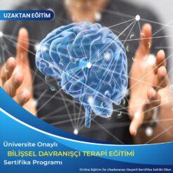 Uygulamalı Bilişsel Davranışçı Terapi Sertifikası