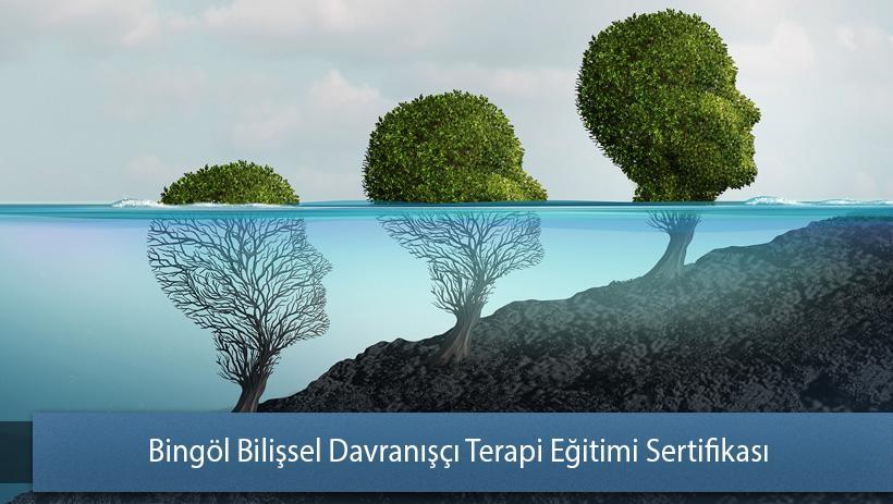 Bingöl Bilişsel Davranışçı Terapi Eğitimi Sertifikası