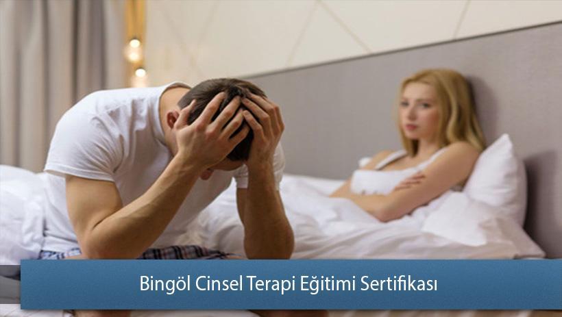 Bingöl Cinsel Terapi Eğitimi Sertifikası