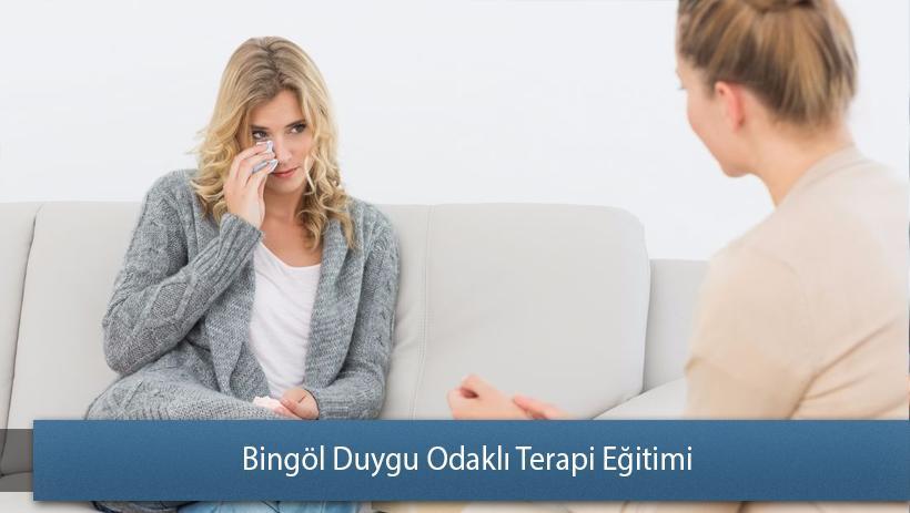 Bingöl Duygu Odaklı Terapi Eğitimi