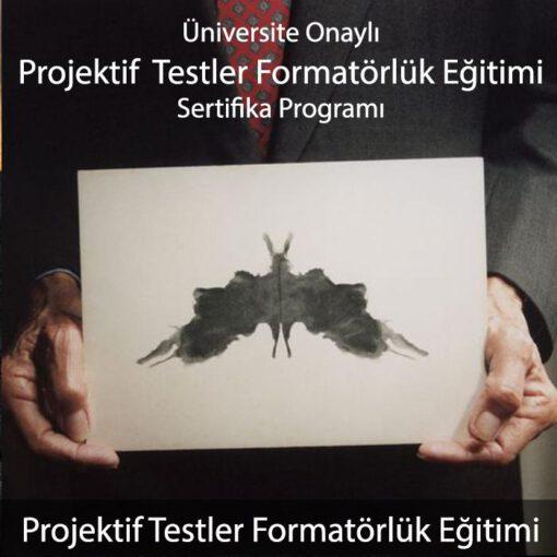 projektif testler eğitimi
