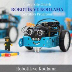 Robotik ve Kodlama Formatörlük