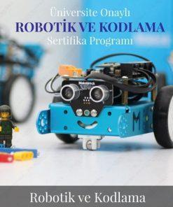 Zonguldak Robotik ve Kodlama Öğretmenliği Uzaktan Eğitim