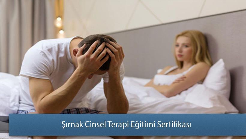 Şırnak Cinsel Terapi Eğitimi Sertifikası