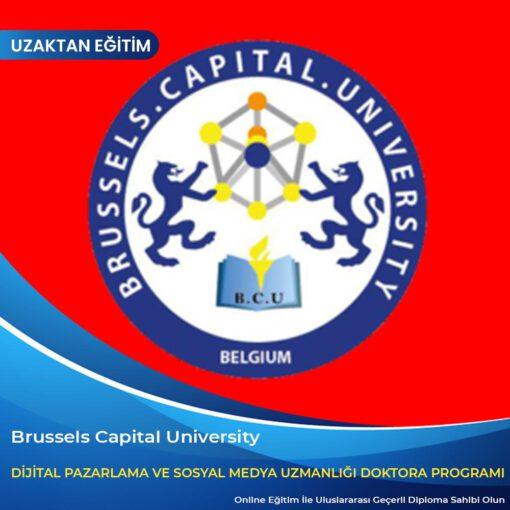 Dijital Pazarlama ve Sosyal Medya Uzmanlığı Doktora Programı