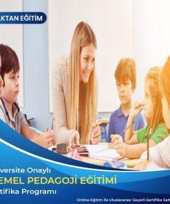 Temel Pedagoji eğitimi sertifikası